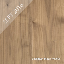 Valencia-swatch